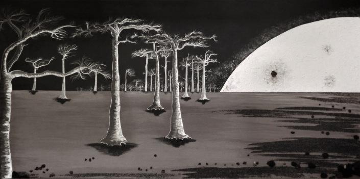 baobabs en clair de lune